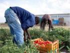 Anche unibz nel progetto FARm